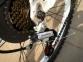 Горный велосипед LAUX Рекс новая концепция 2